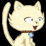 Illustration du profil de Didibrubru