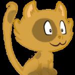 Illustration du profil de vinc85150