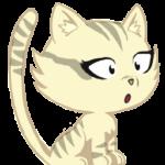 Illustration du profil de enjouonsnous