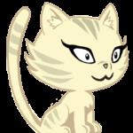 Illustration du profil de choupa choup53