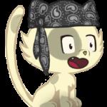 Illustration du profil de ELPATOCHE