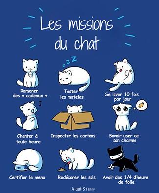 Les missions du chat