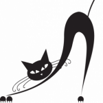 Illustration du profil de Pattes
