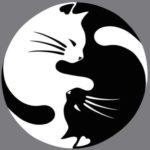 Illustration du profil de Lackme